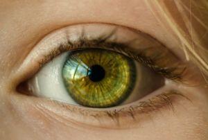 visao de mundo olhos