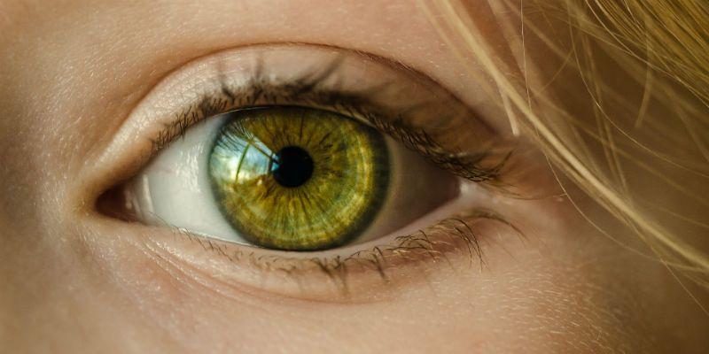 visão de mundo olhos
