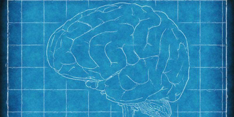 reprogramação mental cérebro